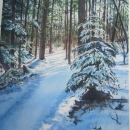 Nancy McLean Watercolours-Winter_on_the_trail