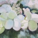 hydrangea-blossoms-nancy-mclean